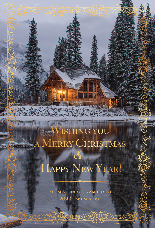 Wishing you  a Merry Christmas a Happy New Year!
